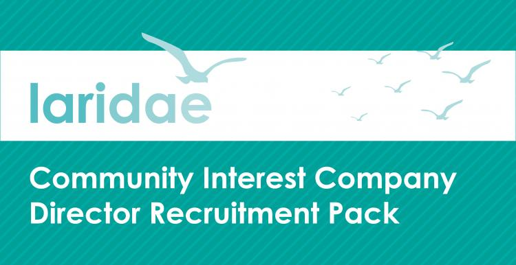 Laridae CIC Director Recruitment Pack