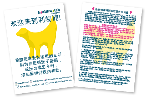 Image of student health information translated into Chinese